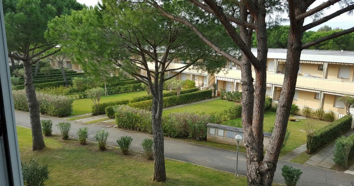 Appartamento Monolocale in affitto a Marina di Bibbona