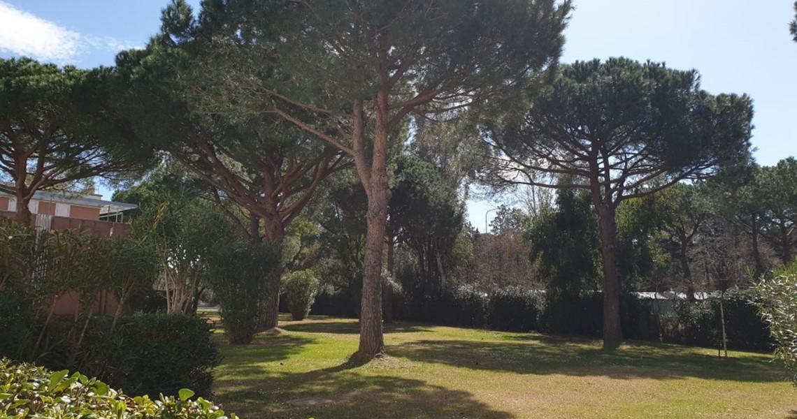 Appartamento bilocale in vendita a Marina di Bibbona con giardino
